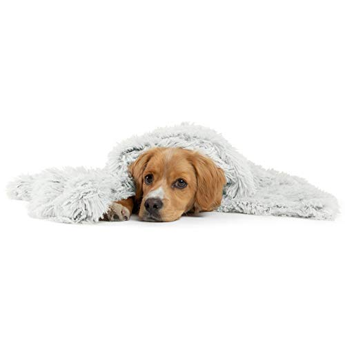 Best Friends by Sheri Luxury Shag Dog & Cat Throw Blanket 30x40, Frost, Matching Donut Shag Cuddler Bed, Multi-Use, Mat, Sofa Cover, Warming, PTB-SHG-FRS-3040