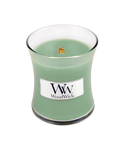 Woodwick White Willow Moss Kleine Kerze, Glas, Grün, 7x 7x 7,8cm