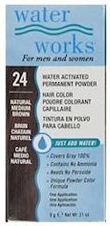 Water Works Permanent Powder Hair Color - #24 Nar Medium Brown 0.2 oz. (Pack of 2)