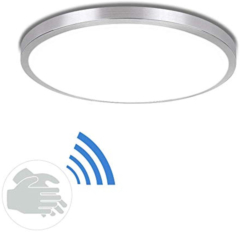 SGWH LED Aluminium Deckenleuchte, ultradünne Acryl Deckenleuchte moderne intelligente sprachaktivierte Deckenleuchte postmodernes Wohnzimmer Schlafzimmer Korridorlampe 15W 18W 24W (Gre  40cm)