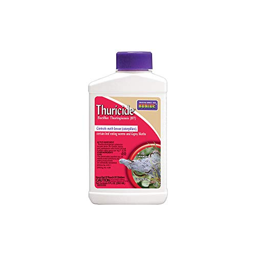 Bonide Leaf Eating Worm & Moth Killer, Thuricide Bacillus Thuringiensis (Bt) Outdoor Insecticide/Pesticide Liquid Concentrate (8 oz.)