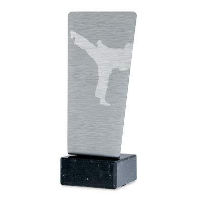Trofeos Martínez - Trofeo de Acero Inoxidable Grabado a láser Karate. (23cm)