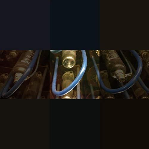 Rohrdommel (Disscut Remix)