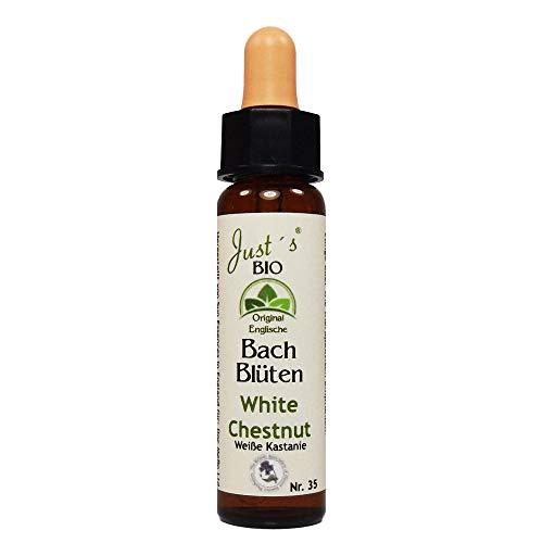 White Chestnut Nr. 35 Just´s Original englische BIO Bachblüten Rosskastanie Blütentherapie für Mensch und Tier
