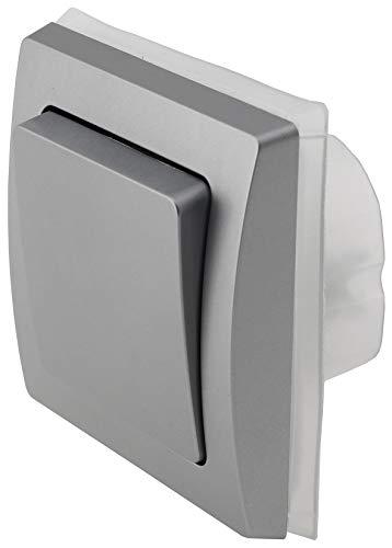 Delphi - Interruptor empotrado para exteriores (250 V, IP44, para zonas húmedas, para interiores y exteriores, color plateado y gris