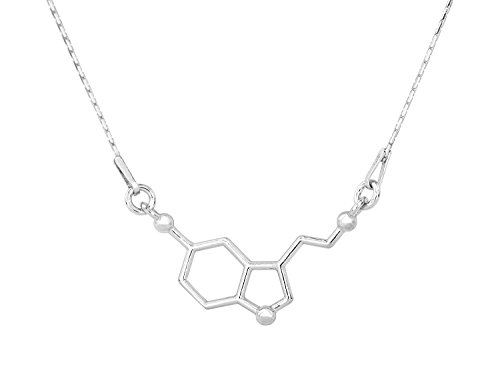 Beaux Bijoux Serotonin Necklace - Silver Tone DNA Necklace - Serotonin Biochemistry Molecule Chemical Structure Pendant in Gift Box