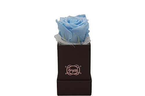 Original Beyond Flowerbox - Chocolate Kollektion mit 1 Infinity Rose in hellblau (Babyblau)