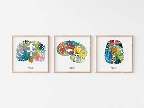 Human Brain Art
