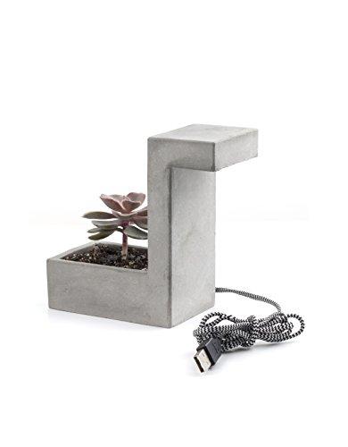 Kikkerland PL03-EU Lampe Béton avec Pot de Fleurs pour Table