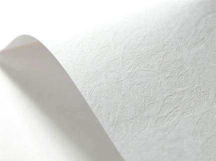 Netuno 20 x Weiß 246g Struktur-Karton ledergenarbt Präge-Karton DIN A4 210x297 mm, Elfenbeinkarton Ultraweiß, Bastel-Karton strukturiert, ideal für Visitenkarten, Einladungs-Karten, Zertifikate