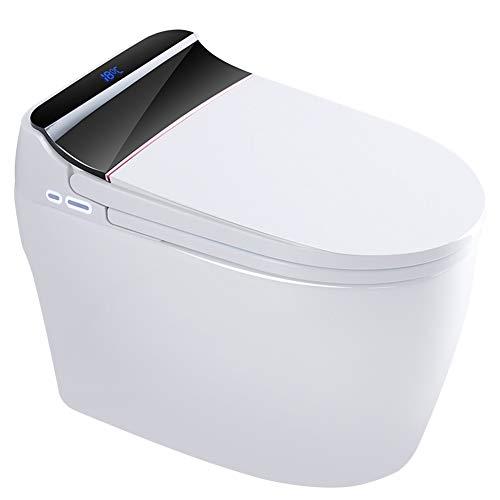 VIY Integrierte Elektrisch Toilette, Multifunktional Dusch WC-Sitze, Intelligente Toiletten Abdeckung, mit Gewärmter Sitz, Warme Lufttrocknung, Kabellose Fernbedienung, Desodorierung (1420W)