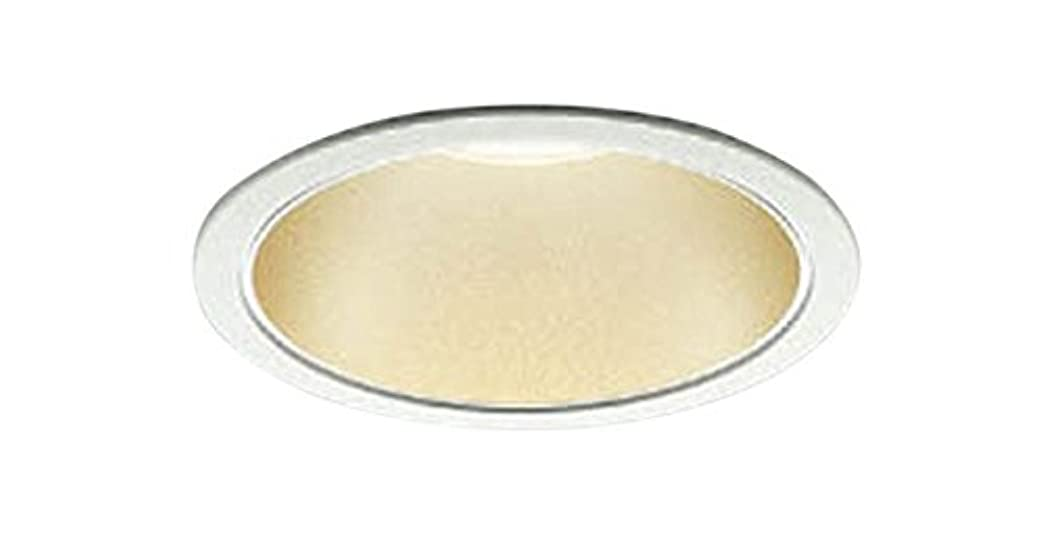 臭い肝池コイズミ照明 ダウンライト [屋内屋外兼用]コンフォートダウンライト 白熱灯100W相当 ON-OFFタイプ 電球色 AD47745L