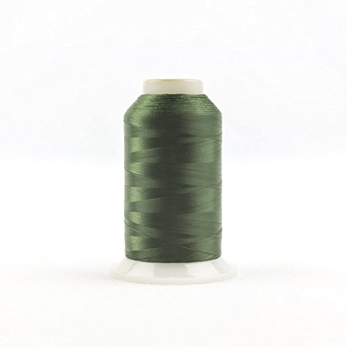 WonderFil, Specialty Threads, InvisaFil, 2-Ply Cottonized Soft Polyester, Silk-Like Thread for Fine Sewing, 100wt - Hunter Green, 2500m