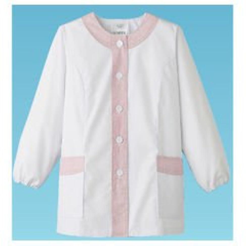 はっきりとやむを得ない腐食する女性用デザイン白衣 長袖 FA-723 M/62-6633-70