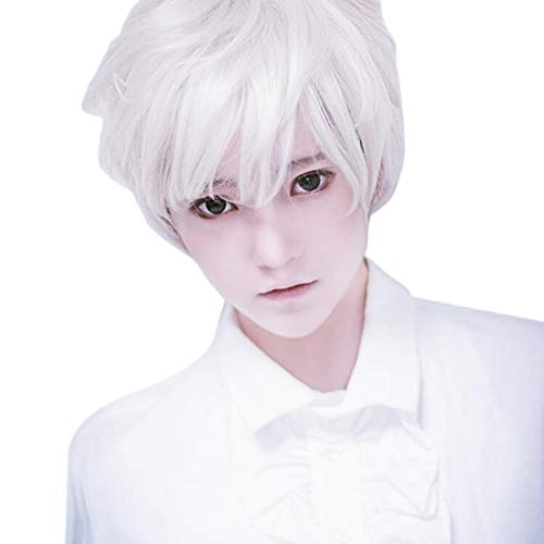 Men Guy's Wigs, Boy White Short Hair Heat Resistant Lace Front Synthetic Cosplay Anime Wigs For Carnivals Party (White)