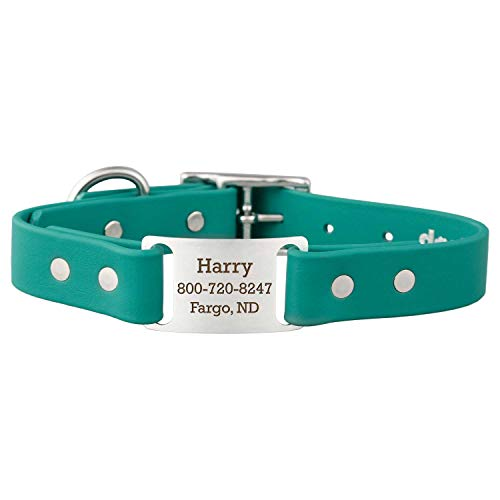 dogIDs Personalized Waterproof ScruffTag Dog Collar - Soft Grip Biothane, Adjustable, Odor Resistant, Custom Laser Engraved Name Plate - Teal, 1 in x 18 in (Fits Neck Sizes 16-20 in)