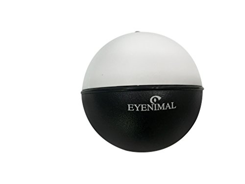Eyenimal Balle Roulante pour Chien Diamètre 8 cm
