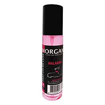Morgan Parfum de Malabar pour Chien