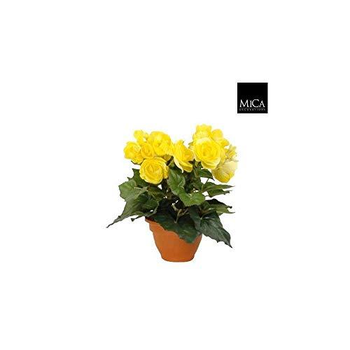 MICA Decorations 977002 Fleurs, Begonia, Jaune