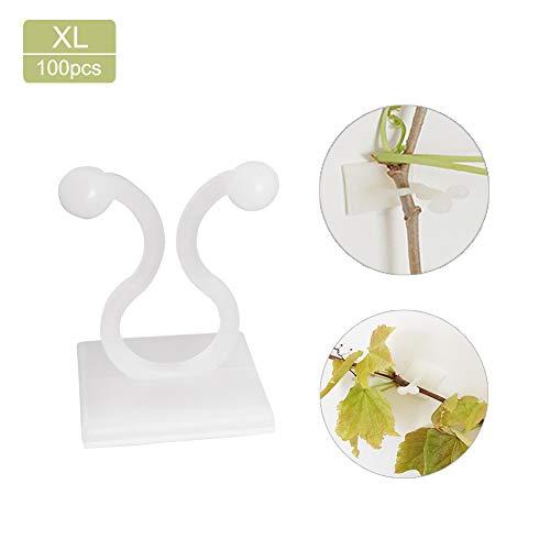 Wyi - 100 clips de fijación de pared para plantas trepadoras de jardín, hortalizas, soporte para plantas de jardín, hortalizas, ganchos de fijación invisibles, ganchos de fijación para pared, ganchos autoadhesivos