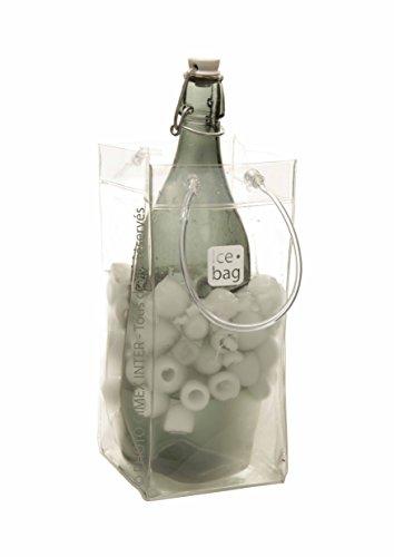ice bag Transparente