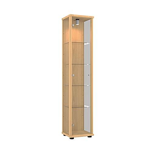 K-Möbel Glasvitrine in Buche Dekor (176x37x33 cm) mit 4 höhenverstellbaren Glasböden aus ESG; beleuchtet; perfekt für Sammler;