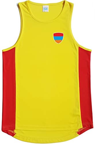 Nation Armenien Trikot Top Ärmellos Training ATH BR-GE (L)