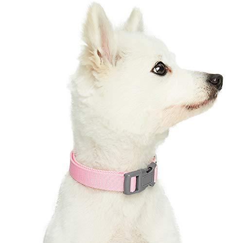 Umi. Essential Classic - Collar para Perros M, Cuello 37-50 cm, Collares Ajustables para Perros (Rosa)