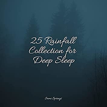 25 Rainfall Collection for Deep Sleep