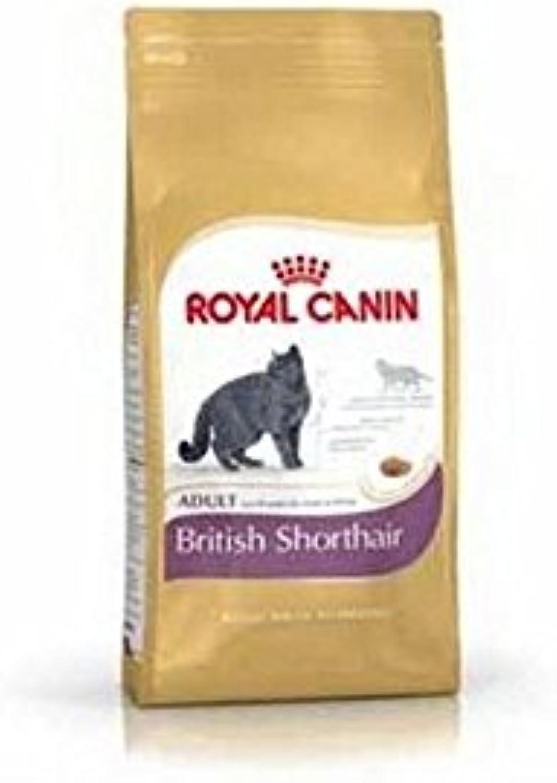 ROYAL CANIN British Shorthair (400g) (Pack of 6)