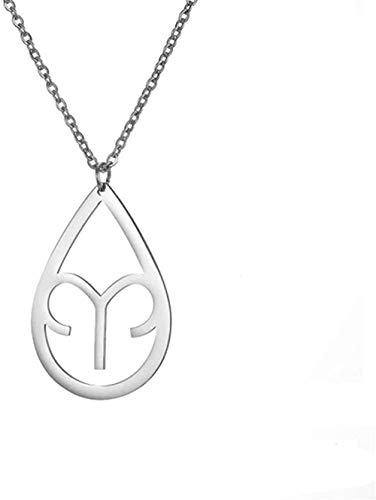 ZHIFUBA Co.,Ltd Necklace Fashion Zodiac Necklace Stainless Steel Necklace Twelve Constellations Pisces Gemini Aquarius Libra Pendant Jewelry Women Birthday Gift