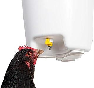 Amazon.es: bebederos para gallinas
