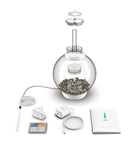 Baby biOrb Kugel Aquarium 15 l – Silber – Design Komplett Aquarium 15 Liter - 2