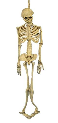 Forum Novelties Halloween Skelett Ganzkörper Latex Skelett 1,52 m Knochen