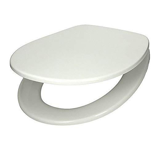 Villeroy & Boch 88246101 WC-Sitz Omnia mit durchgehender Scharnierwelle, edelstahl/weiß