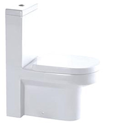 Euroto Luxury Toilet Elongated for Bathroom Toilet Bowls, Toilets, and Toilet Seats(One-piece, Dual Flush(Siphonic))