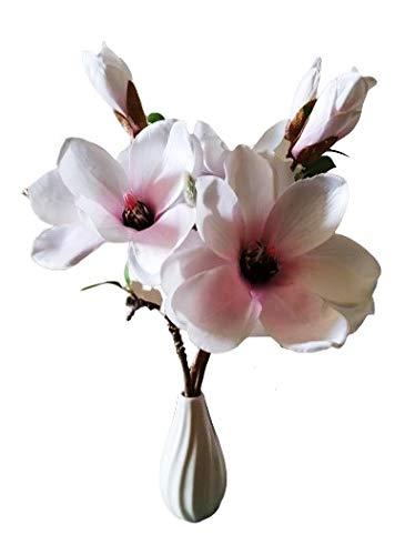 KK Floraland Magnolie mit Vase, Weiß/Pink