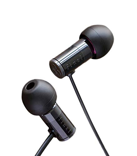 Final E1000 Sound Isolating In-Ear Headphones Earphones with Dynamic drivers