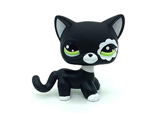 WooMax Littlest Pet Shop LPS Jouet Rare Noir Court Cheveux Chat Chat Kitty Figure Figure Tpy # 2249 pour Gar?ons Filles Enfants Cadeau