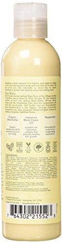Beauty Shopping Shea Moisture Jamaican Black Castor Oil, Strengthen & Restore Styling Lotion,