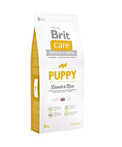 Brit Care Puppy, Ipoallergenico per cani cuccioli di tutte le taglie, Agnello e Riso - 3 Kg