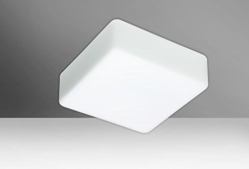 Besa Lighting 888307C 2X60W A19 Geo 11 Ceiling Flush Mount with Opal Matte Glass by Besa