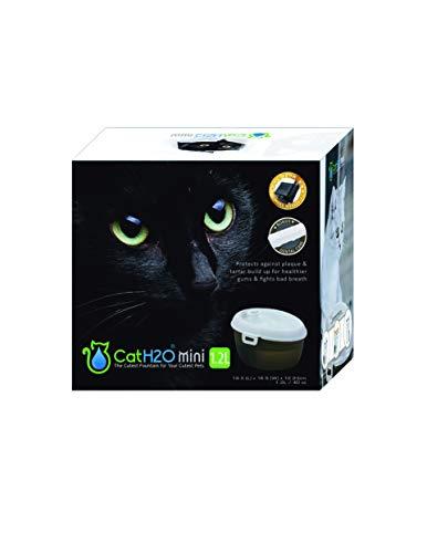 almohadillas para placas dentales fabricante Cat H2O