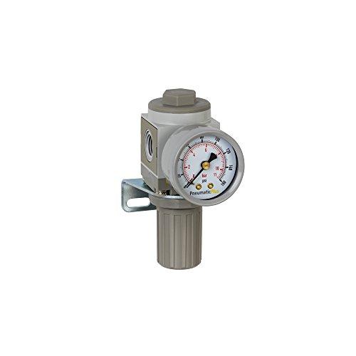 "PneumaticPlus SAR2000M-N02BG Miniature Air Pressure Regulator 1/4"" NPT - Gauge, Bracket"