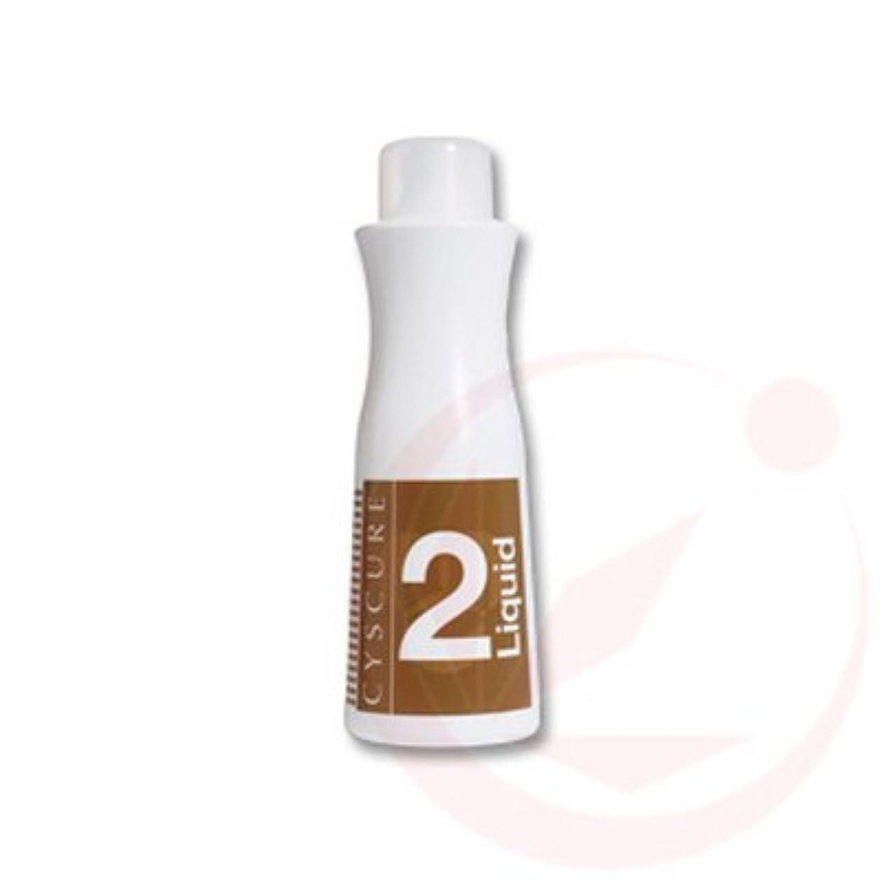 発明炭素骨の折れるタマリス シスキュア2リキッド 1000g (パーマ剤/2剤)