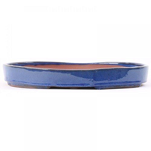 Bonsai 51012 Bol ovale Bleu 34 x 24 x 4,5 cm