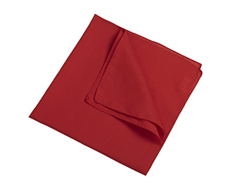 2Store24 Bandana in red