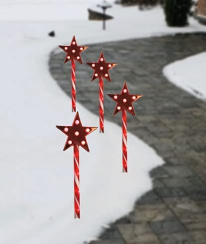 Los Angeles Mall LAMPHOME 4PK 21.5Inches 124LED Trust red Lawn Star Light Stake Pathway