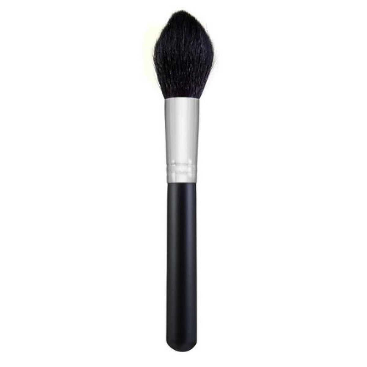 住人写真ロックMORPHE BRUSHES Large Pointed Powder Brush - M401 (並行輸入品)