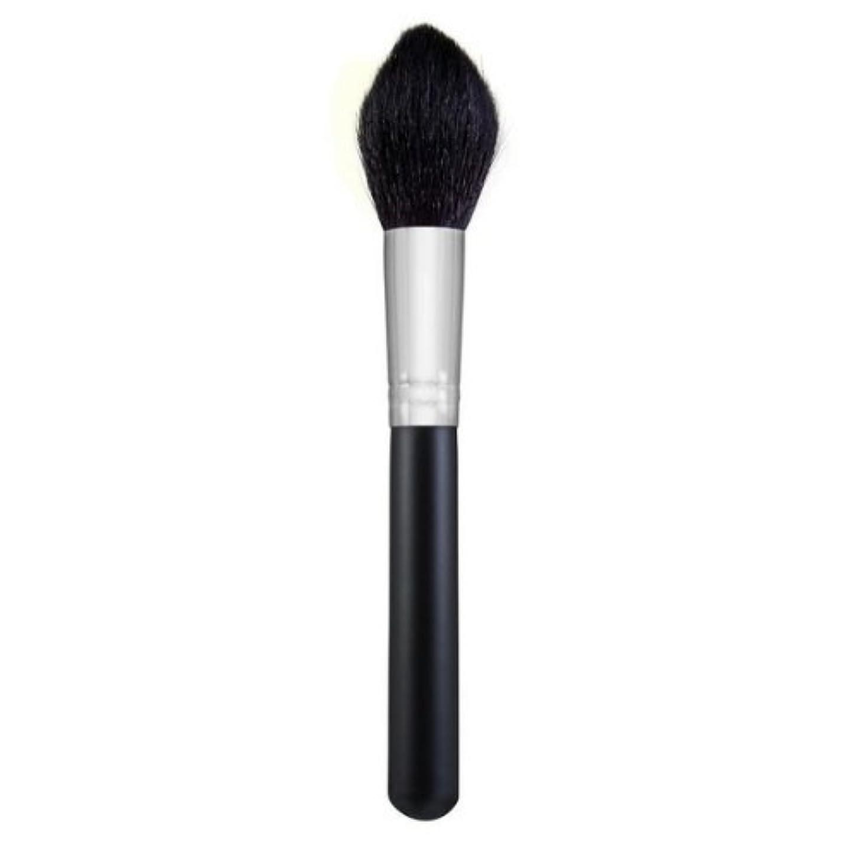 忌まわしい尾ほこりMORPHE BRUSHES Large Pointed Powder Brush - M401 (並行輸入品)